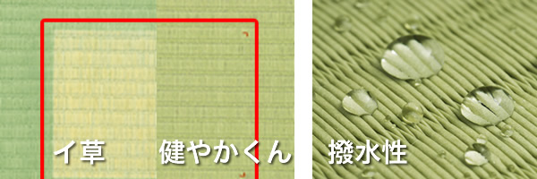 ダイケン畳健やかくんは変色せず綺麗。撥水性もある。
